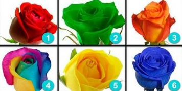 A test done by a renowned psychologist! Choose a rose and discover your hidden personality...