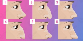 The shape of your NOSE describes your character!