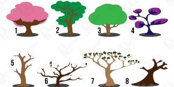 Choose a tree and find some hidden features of your personality!