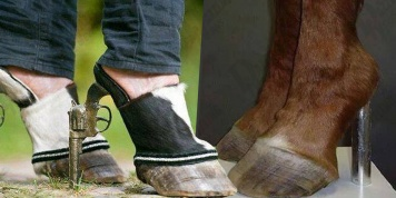 13 Ugliest pairs of shoes in the world that contradict fashion entirely...