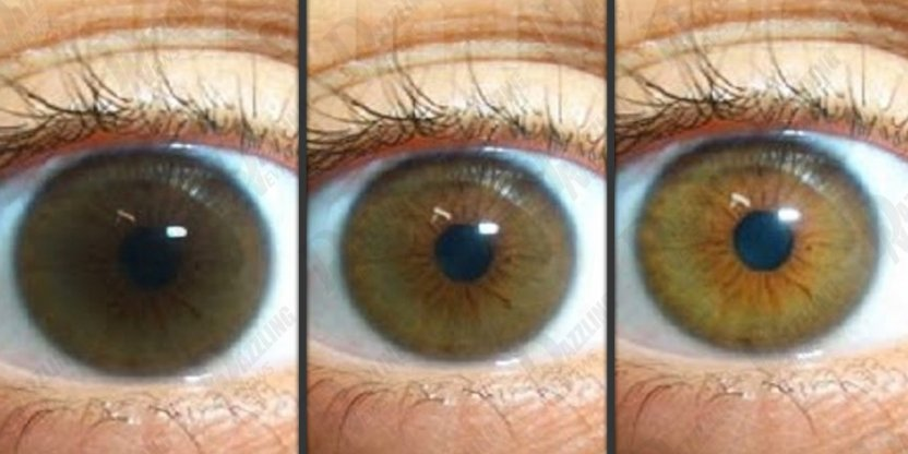 7 Kinds of food that can change colour of eyes!