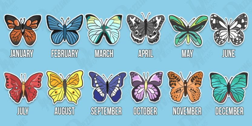 The butterfly of each month reveals your future