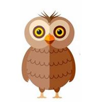 Owl - logical and intelligent