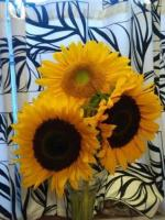 4. It seems that someone is willing to do away with sunflowers...