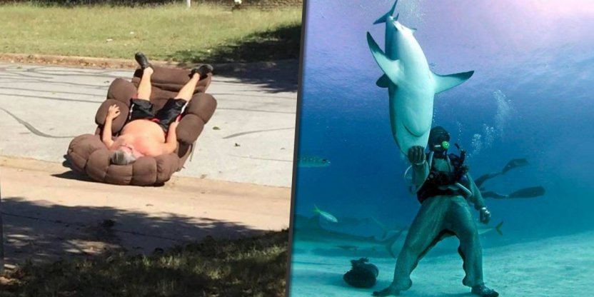 15 People who knew how to take the photo at the right moment