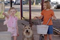 "Skip in ""My Dog Skip"""
