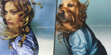 This dog copied iconic pictures of Madonna, and the details are unbelievable!
