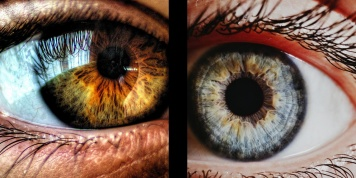 Eyes - the mirror to our health