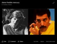Freddie Mercury and Lady Di: All about their intimate friendship 19