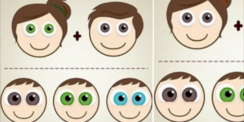 Have you ever wondered what will be the colour of your children's eyes?