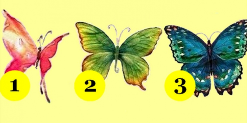 The BUTTERFLY test. Check what they reveal about you!