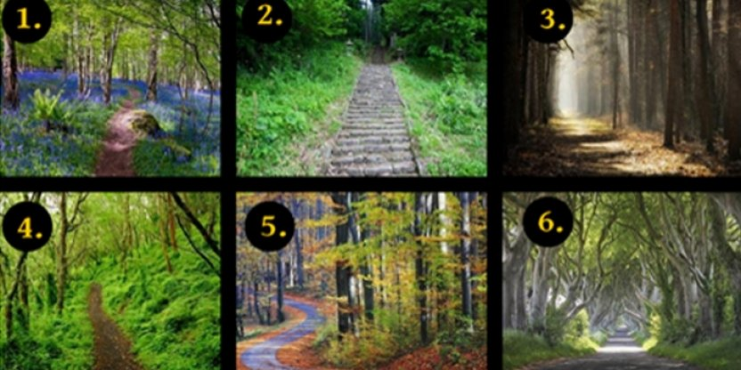 A test done by a renowned psychologist! Choose a path and discover your hidden personality