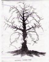 The tree of the faces 1